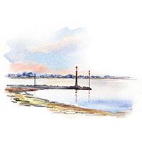 Pointe de Brévands et phoque par Céline Dodeman, cours dessine et aquarelle
